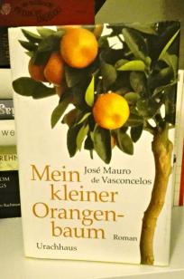 mein-kleiner-orangenbaum